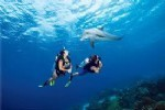 Scuba diving  tour from Altinkum Didyma