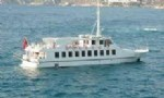 Bodrum By Ferry  tour from Altinkum Didyma