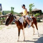 Horse Safari tour from Altinkum Didyma