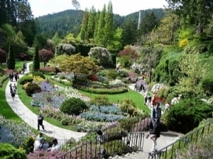 Botanik Turizmi